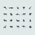 Set of mammals icons simple web for web and mobile applications Royalty Free Stock Photography