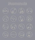 Set of mammals simple icons it is a web Royalty Free Stock Photography