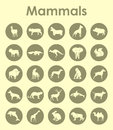 Set of mammals simple icons it is a web Stock Image
