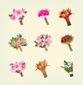 Set of many bouquets of flowers Royalty Free Stock Image
