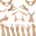 Set of many different hands Royalty Free Stock Image