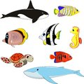 Set of marine animals vector illustration Royalty Free Stock Photos