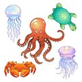 Set of marine inhabitants illustrations in a cartoon style Royalty Free Stock Photo