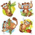 A set 1 of monkeys tarsiers