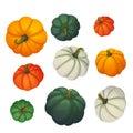 Set of multicolored pumpkins. Autumn, harvest, thanksgiving, halloween icons.