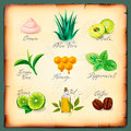 Set of natural cosmetics ingredients Royalty Free Stock Photo