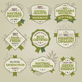 Set of natural labels Royalty Free Stock Images
