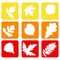 Set nature icons. Stock Photos