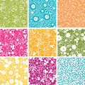 Set of nine spring flowers seamless patterns backgrounds Stock Photo