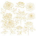 Set of one-colored outlined roses Royalty Free Stock Images