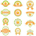 Set of orange labels Royalty Free Stock Photo