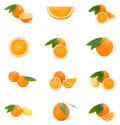 Set of oranges Stock Photography