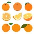 Set of oranges. Royalty Free Stock Photo