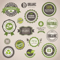 Set of organic badges and labels Royalty Free Stock Photos