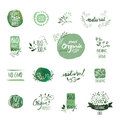 Set of organic food hand drawn watercolor badges and elements.