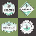 Set of organic food logo, badges, banners, emblem with pattern. Package design. Clean food. Natural food, healthy food.