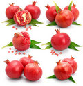 Set os pomegranate fruits with green leaf isolated Royalty Free Stock Photo