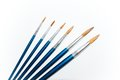 A set of paint brushes. Royalty Free Stock Photo