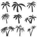 Set of palm tree icons isolated on white background. Design elem