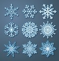 Set of paper snowflakes Royalty Free Stock Photo