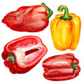 Set of paprika