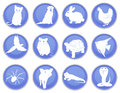 A set of pet icons Stock Image