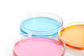 Set of Petri dishes with a colored reagents Stock Photos