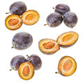 Set of plums Stock Photo