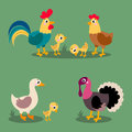 Set of popular colorful vector farm birds