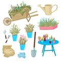 Set of potted plants, trolley and garden tools. Vector illustration Royalty Free Stock Photo