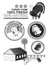 Set of premium turkey meat labels and stamps. Royalty Free Stock Photo