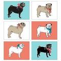 Set Of Pugs. Vector Illustrati...