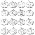 Set of pumpkin hand drawn sketch many various emotions in the form Royalty Free Stock Image