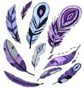 Set of purple bird feathers isolated on white. marker art. concept for cards, , congratulations, branding.
