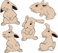 A set of rabbits cartoon the complete lovely fluffy Stock Images