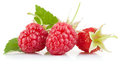 Set raspberry with green leaf Royalty Free Stock Photo