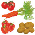 Set of realistic vegetables Royalty Free Stock Photo