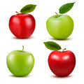 Set of red and green apple fruits with cut and gre Royalty Free Stock Photo