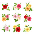 Set of red, pink, white, yellow and orange roses. Vector illustration. Royalty Free Stock Photo