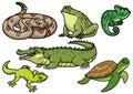 Set of reptile cartoon illustration