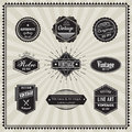 Set of retro vintage badge linear thin line art deco design elem Royalty Free Stock Photo