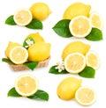 Set of ripe lemon fruits isolated Royalty Free Stock Photography
