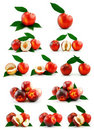 Set of Ripe Peaches (Nectarine) Isolated on White Stock Photo