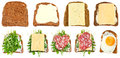 Set of sandwiches from toasted rye bread isolated on white background Royalty Free Stock Photo