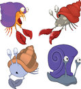Set of sea crabs and snails cartoon multi coloured with claws Stock Images