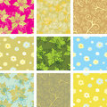 Set of seamless backgrounds Royalty Free Stock Photos