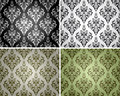 Set of seamless backgrounds with floral pattern 2 Royalty Free Stock Photo