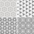 Set of seamless floral pattern background Stock Photo
