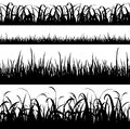 set of seamless grass silhouette panorama background Royalty Free Stock Photo