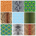 Set Of Seamless Textures Of An...